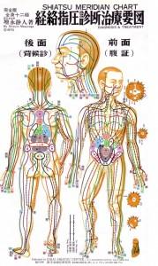 A testünkben futó energia pályák, meridiánok - Shiatsu